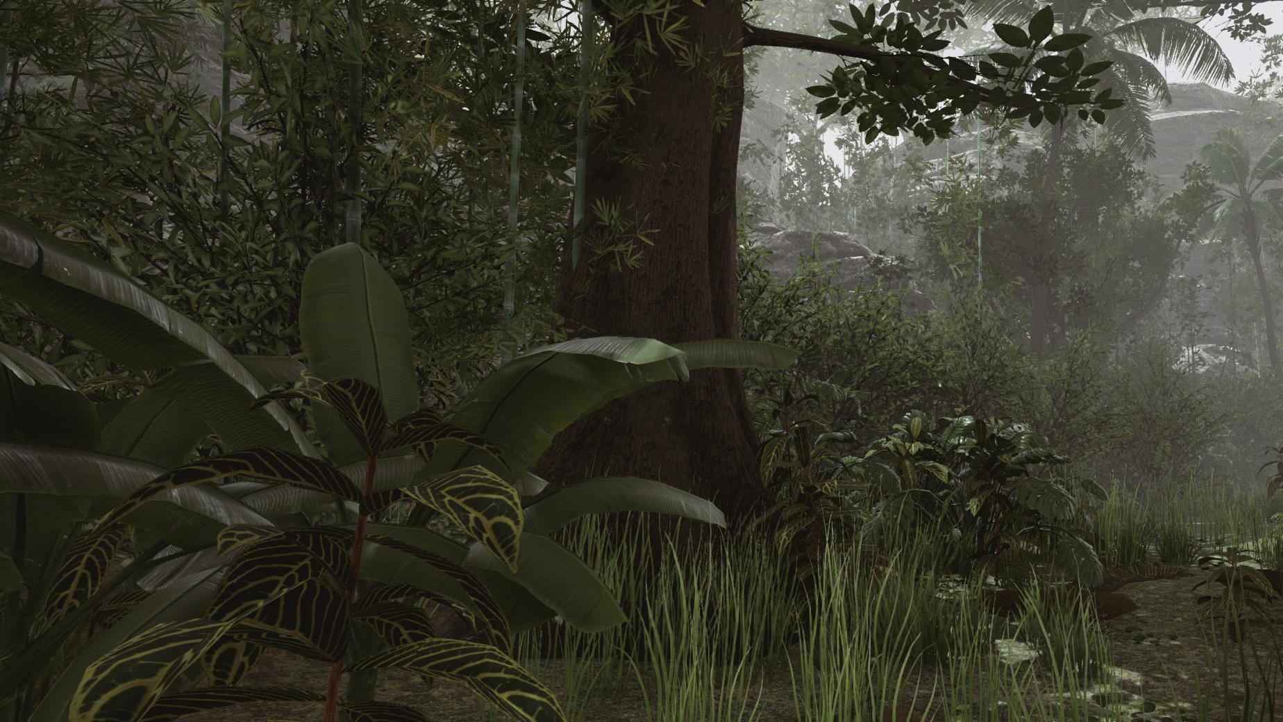 02_tropical_02.jpg